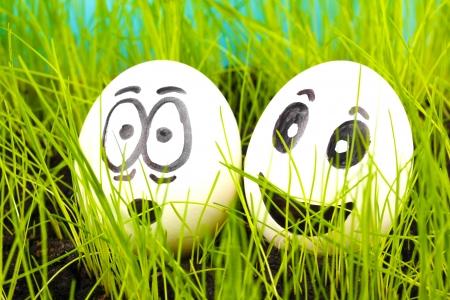 caras chistosas: Huevos blancos con caras divertidas en la hierba verde