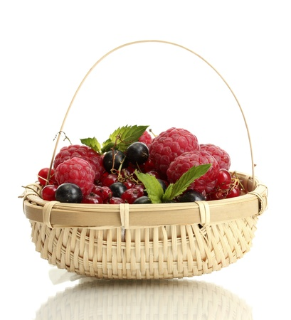 ripe berries with mint in basket isolated on white Stock Photo - 14741340