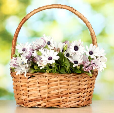 bouquet of beautiful summer flowers in basket, on green background photo
