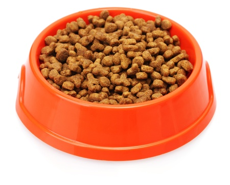 Cat food in bowl isolated on white photo