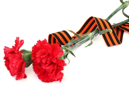carnations and St. George's ribbon isolated on white Stock Photo - 14741314