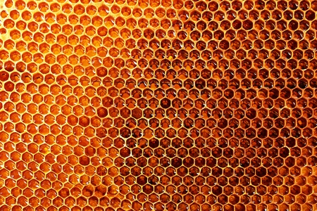 yellow beautiful honeycomb with honey, background Stock Photo - 14795642