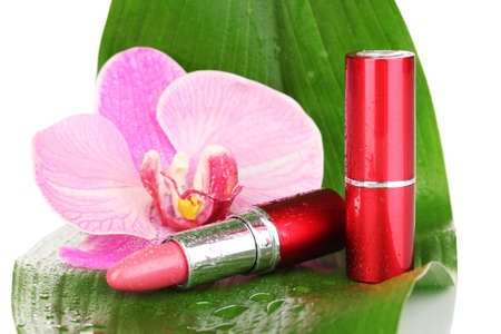 lipsticks on green leaf isolated on white Stock Photo - 14795109