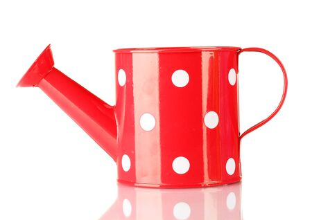 Red watering can with white polka-dot isolated on white photo