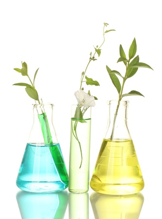 incubate: test-tubes with a colorful solution and plant isolated on white close-up