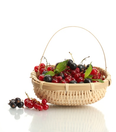 ripe berries with mint in basket isolated on white Stock Photo - 14832062