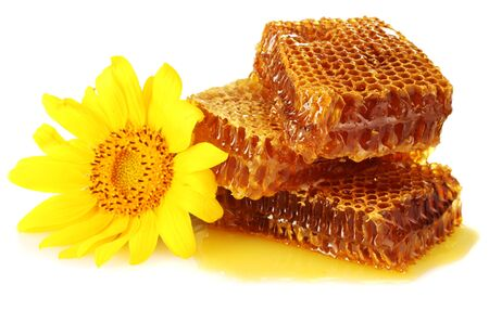 sweet honeycombs with honey and sunflower, isolated on white photo