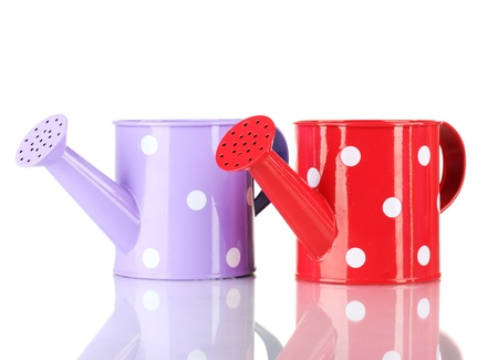 Purple and red watering cans with white polka-dot isolated on white photo