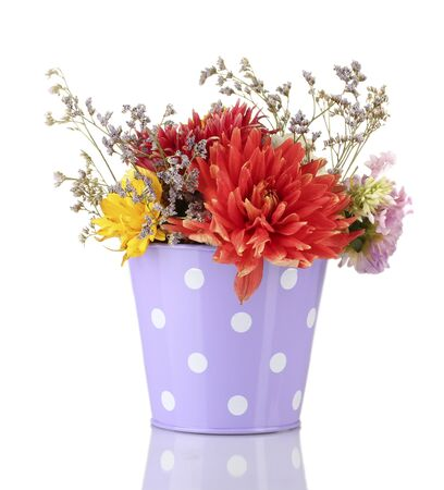 Purple bucket with white polka-dot with flowers isolated on white photo