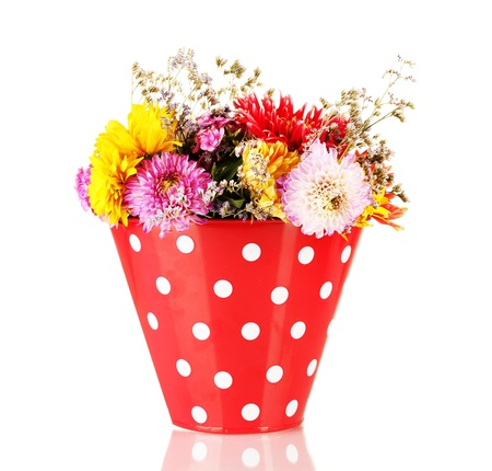 Red bucket with white polka-dot with flowers isolated on white photo