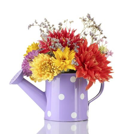 bailer: Purple watering can with white polka-dot with flowers isolated on white
