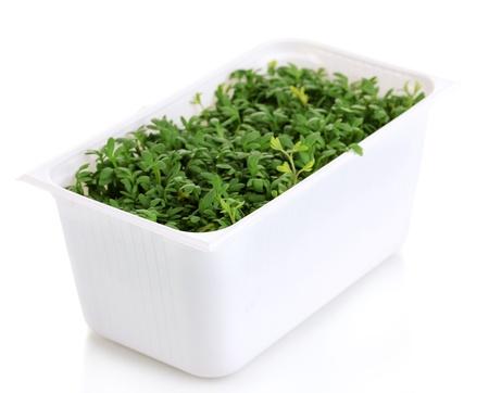 Fresh garden cress in white plastic box isolated on white photo