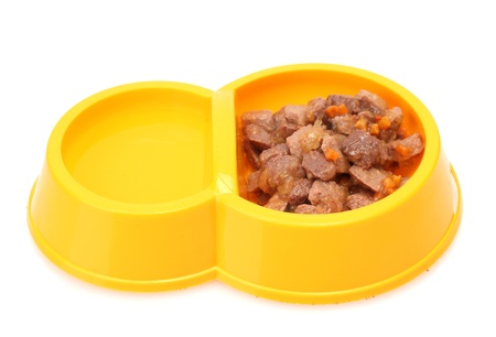 yellow bowl with cat food and water isolated on white photo