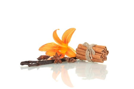 Vanilla pods with spices isolated on white photo