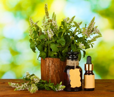 Essential oil and mint on green background close-up Stock Photo - 15007343