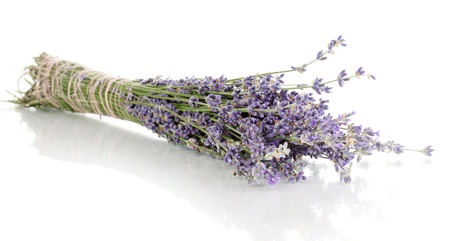 lavendin: Lavender flowers isolated on white