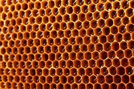 yellow beautiful honeycomb with honey, background Stock Photo - 15060039