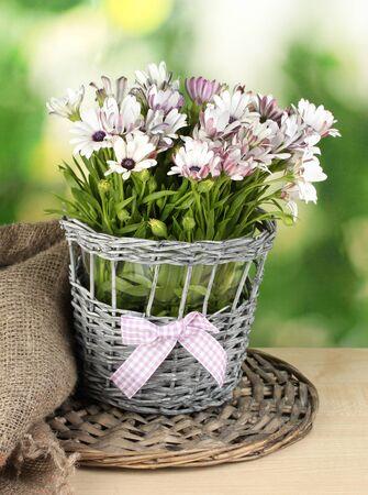flower arrangement white table: bouquet of beautiful summer flowers in wicker vase, on green background