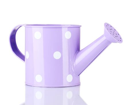 Purple watering can with white polka-dot isolated on white photo
