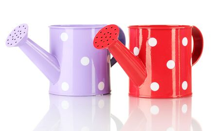 Purple and red watering cans with white polka-dot isolated on white Stock Photo - 15047517
