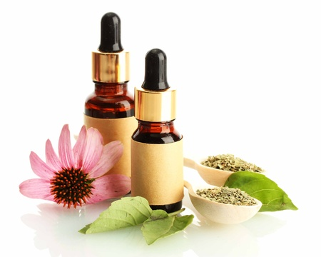 bottles with essence oil and purple echinacea , isolated on white Stock Photo - 15047501