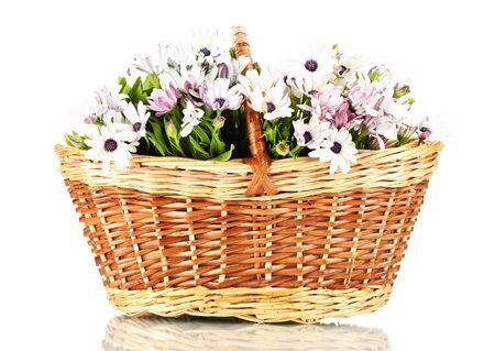 bouquet of beautiful summer flowers in basket, isolated on white photo