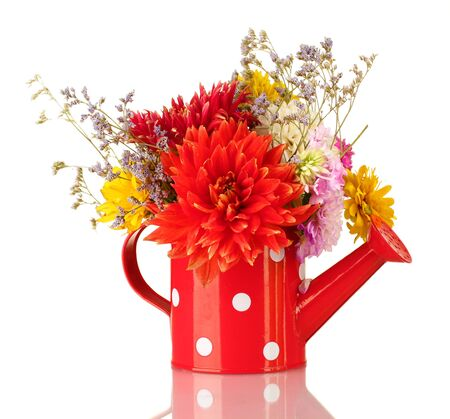 Red watering can with white polka-dot with flowers isolated on white Stock Photo - 15492559