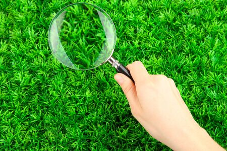 magnifying glass in hand on green grass Stock Photo - 15505126