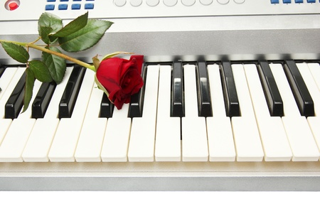 background of synthesizer keyboard with rose photo