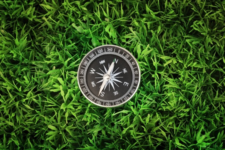 compass on green grass Stock Photo - 15249484