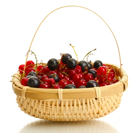 ripe berries in basket isolated on white  photo
