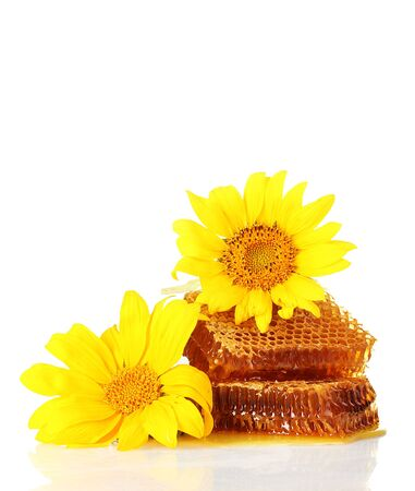 sweet honeycombs with honey and sunflowers, isolated on white photo