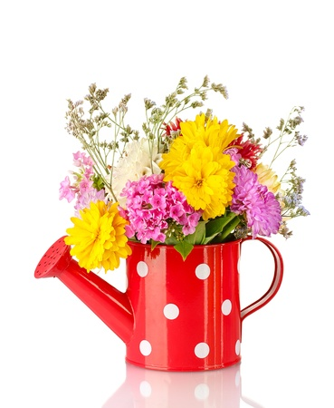 bailer: Red watering can with white polka-dot with flowers isolated on white Stock Photo