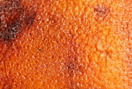 Rotten orange texture, close up photo