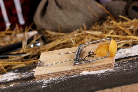 Mousetrap with a piece of cheese in barn close-up on wooden background photo