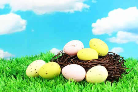 Colorful easter eggs on grass photo