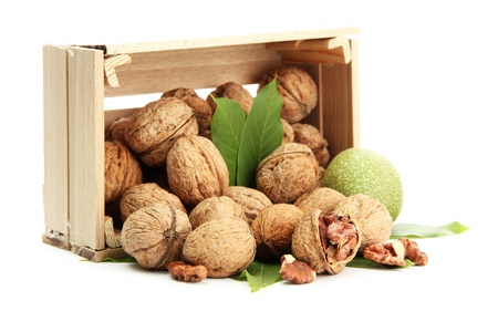 nuts: walnuts with green leaves in woooden crate, isolated on white