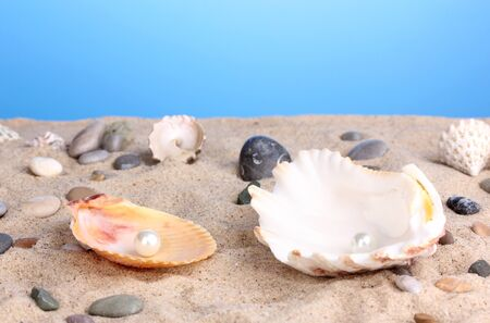 Sea shells with pearl on sand photo