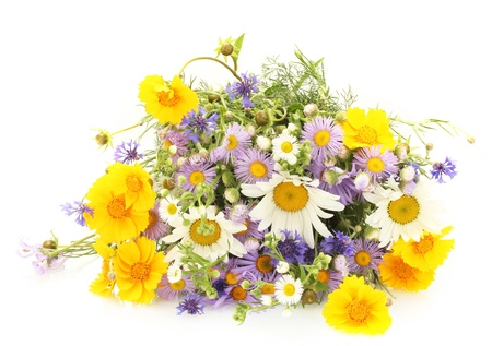 mixed flower bouquet: beautiful bouquet of bright  wildflowers, isolated on white Stock Photo