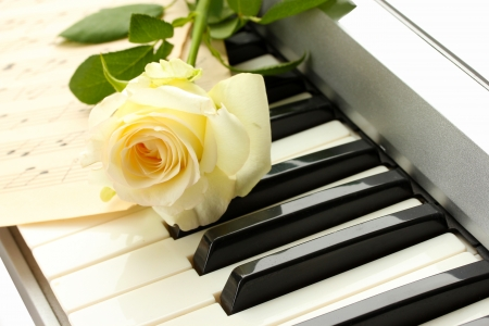 background of synthesizer keyboard with rose photo