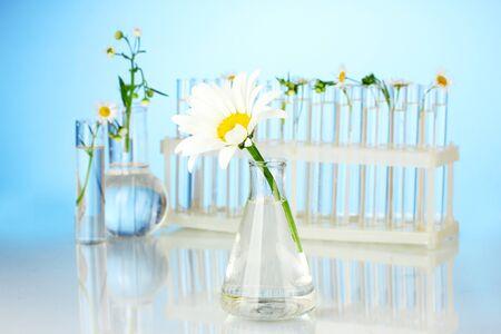 Test-Röhrchen mit einer transparenten Lösung und die Pflanze auf blauem Hintergrund close-up