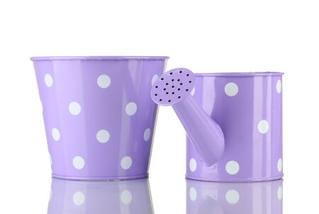 Purple watering can and bucket with white polka-dot isolated on white photo