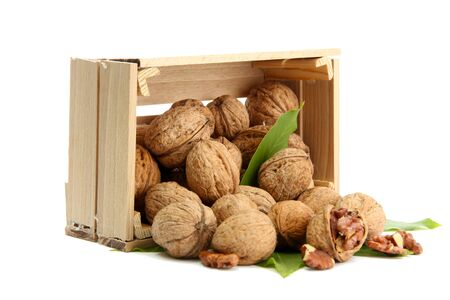 walnuts with green leaves in woooden crate, isolated on white Stock Photo - 15529496