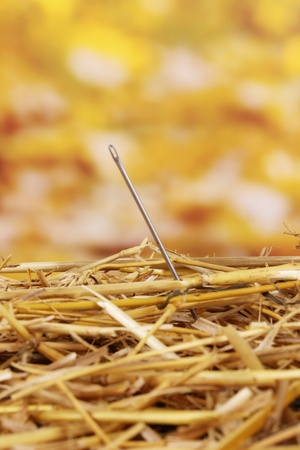 hard to find: Needle in a haystack close-up Stock Photo