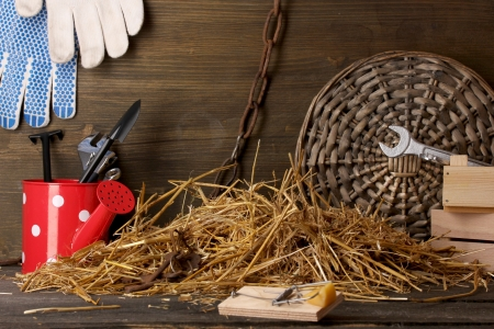 Mousetrap with a piece of cheese in barn on wooden background Stock Photo - 15458393