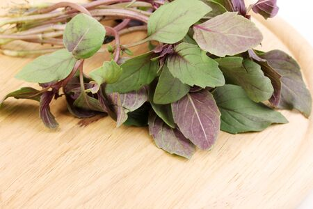 Fresh basil on wooden board isolated on white Stock Photo - 15459000