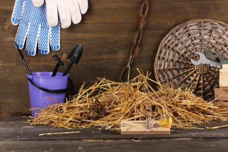Mousetrap with a piece of cheese in a barn on wooden background photo