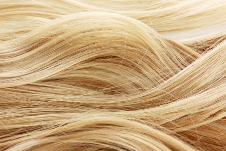 blond hair: Curly blond hair background