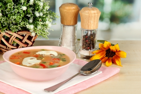 Fragrant soup in pink plate on table on window background close-up Stock Photo - 15545811