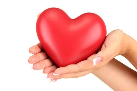 cuore in mano: Cuore rosso nelle mani della donna, su sfondo bianco close-up